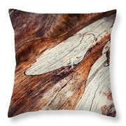 Detail Of Abstract Shape On Old Wood Throw Pillow