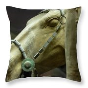 Details Of Head Of Horse From Terra Cotta Warriors, Xian, China Throw Pillow