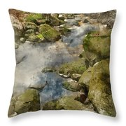 Digital Watercolor Painting Of Autumn Fall Forest Landscape Stre Throw Pillow