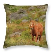 Digital Watercolor Painting Of Stunning Image Of Wild Pony In Sn Throw Pillow