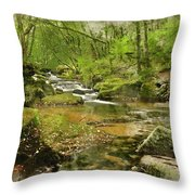 Digital Watercolor Painting Of Stunning Landscape Iamge Of River Throw Pillow