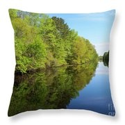 Dismal Swamp Canal In Spring Throw Pillow