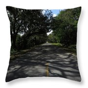 Dixie Highway In Micanopy Florida Throw Pillow