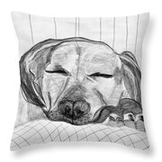 Django Napping Throw Pillow