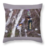 Docking Bluebird Throw Pillow