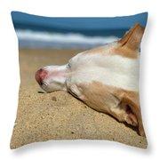 Dog Daze Of Summer Throw Pillow by Lora J Wilson