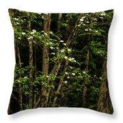 Dogwood Tree 2 Throw Pillow