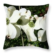 Dogwood V 2019 Throw Pillow