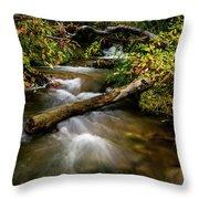 Dogwoods Along The Provo Deer Creek Throw Pillow
