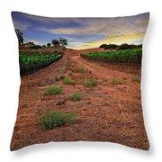 Domaine Vineyards Throw Pillow