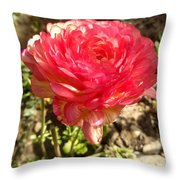Double Coloured Rose Throw Pillow
