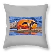 Double Crested Cormorant    Drying Wings         September        Indiana Throw Pillow