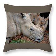 Double Rhino Throw Pillow