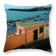 Downhill To The Harbour Throw Pillow