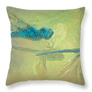 Dragons Fly Throw Pillow