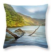 Dreams At The Lake Throw Pillow by Debra and Dave Vanderlaan