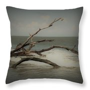 Drifting Along With The Tide Throw Pillow