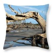 Driftwood Beach Throw Pillow