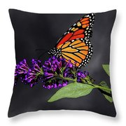 Drink Deeply Of This Moment Throw Pillow