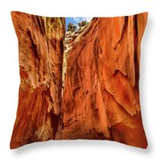 Dry Gulch Canyon Throw Pillow