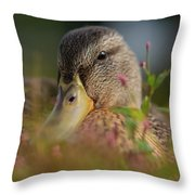 Duck 1 Throw Pillow