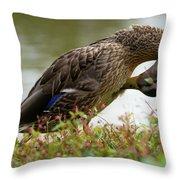 Duck 3 Throw Pillow