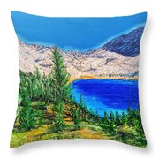 Duck Pass Throw Pillow by Kevin Daly