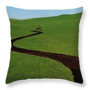 Dunnigan Hills 1 Throw Pillow