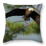 Eagle Flight 1 Throw Pillow