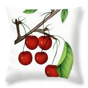 Early Richmond Cherries Throw Pillow