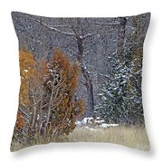 Early Winter On The Western Edge Throw Pillow