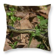 Eastern Garter Snake - 9167 Throw Pillow