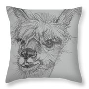 Easy Breezy Beautiful Sketch Throw Pillow by Jani Freimann