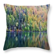 Echo Lake Autumn Shore Throw Pillow