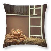 Eggs In Barn Throw Pillow