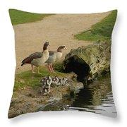 Egyptian Geese Throw Pillow