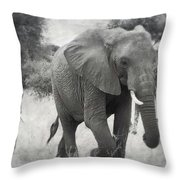 Elephant And Babies Throw Pillow