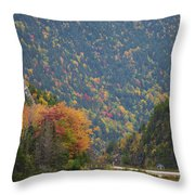 Elephant Head Autumn Throw Pillow
