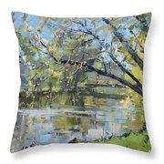 Ellicott Creek Park Throw Pillow