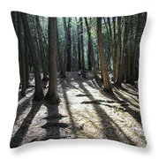 Elora 2 Throw Pillow