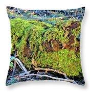 Emerald Tree Throw Pillow