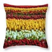 Endless Beautiful Tulip Fields Throw Pillow