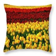 Endless Tulip Fields Throw Pillow