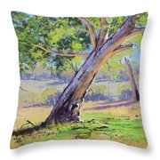 Eucalyptus Tree Australia Throw Pillow