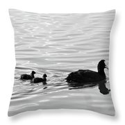 Eurasian Coot And Offspring In Ria Formosa, Portugal. Monochrome Throw Pillow