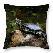 European Pond Turtle Sitting On A Trunk In A Pond Throw Pillow
