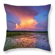 Evening Shower Throw Pillow