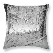 Evening Snow Throw Pillow