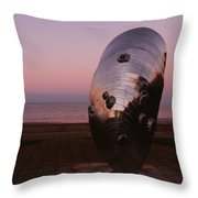 Evening - Time To Reflect Throw Pillow