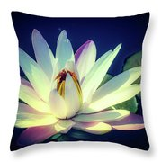 Evening Water Lily Throw Pillow